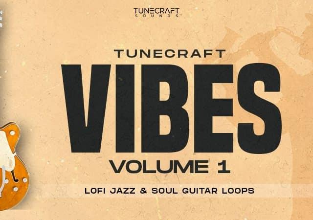 https://www.tunecraft-sounds.com/wp-content/uploads/2021/03/Vibes-Vol.1-1000x450-min-640x450.jpg