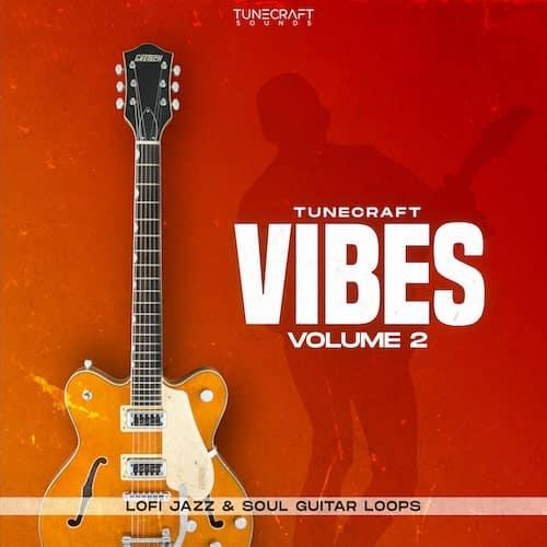 Vibes-Vol.2_500x500-min